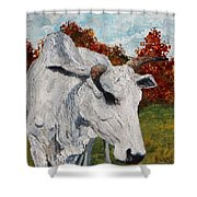 Old Grey Cow Shower Curtain