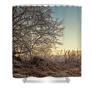 Old Harvester By The Birch Tree Shower Curtain