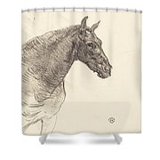 Old Horse (le Vieux Cheval) Shower Curtain