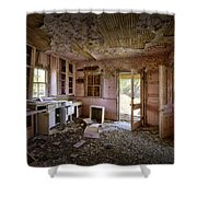 Old House 8 Shower Curtain by Roger Snyder