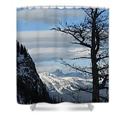 Old Larch Tree Has Best View Shower Curtain