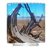 Old Log On Auckland Beach Shower Curtain