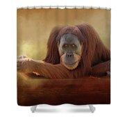 Old Man Orangutan Shower Curtain
