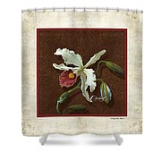 Old Masters Reimagined - Cattleya Orchid Shower Curtain
