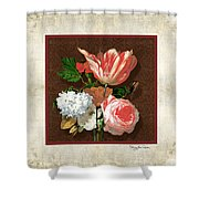 Old Masters Reimagined - Parrot Tulip Shower Curtain
