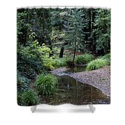 Old Mill Park In Mill Valley 2 Shower Curtain