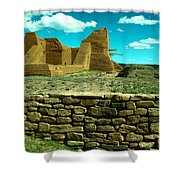 Old New Mexico Shower Curtain