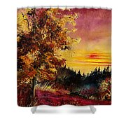 Old Oak At Sunset Shower Curtain