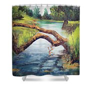 Old Oak Fallen Shower Curtain