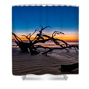 Old Oak New Day Shower Curtain by Debra and Dave Vanderlaan