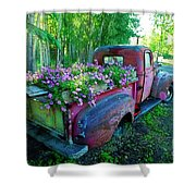 Old Pickup Truck As Flower Bed Shower Curtain