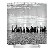 Old Pier Provincetown Harbor Cape Cod Shower Curtain