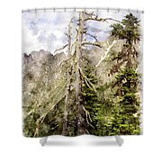 Old Pines Cascades Wc Shower Curtain