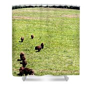 Old Prairie Kings Shower Curtain