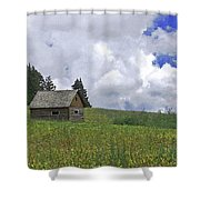 Old Ranchers Summer Cabin Redone Shower Curtain