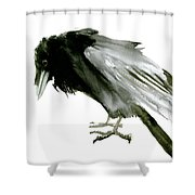 Old Raven Shower Curtain