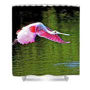 Old Red Eye Shower Curtain
