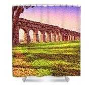 Old Roman Aqueduct Shower Curtain