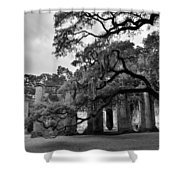 Old Sheldon Church Ruins Black And White 3 Shower Curtain