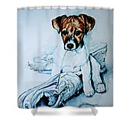 Old Shoe Pup Shower Curtain
