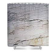 Old Siding Shower Curtain