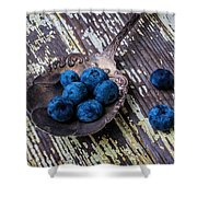 Old Spoon And Blueberries Shower Curtain