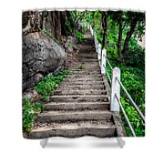 Old Steps Shower Curtain