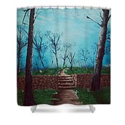 Old Steps To The Horizon Shower Curtain