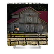 Old-style Horse Barn Shower Curtain
