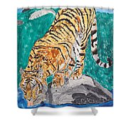 Old Tiger Drinking Shower Curtain