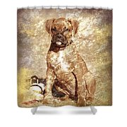Old Time Boxer Portrait Shower Curtain by Angie Tirado