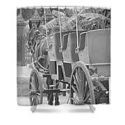 Old Time Horse And Buggy Shower Curtain