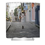 Old Town Alley Cat Shower Curtain