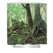 Old Tree Root Shower Curtain