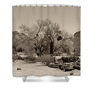Old Tucson Landscape  Shower Curtain