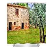 Old Villa And Olive Trees Shower Curtain