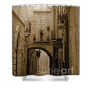Old Village Street Shower Curtain