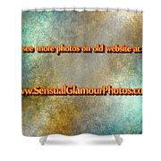 Old Website Shower Curtain