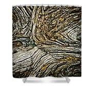 Old Wood 1 Shower Curtain