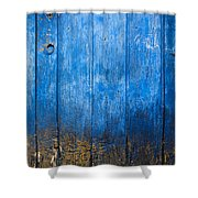 Old Wooden Door Shower Curtain