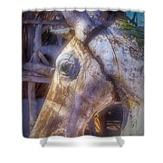Old Wooden Horse Head Shower Curtain
