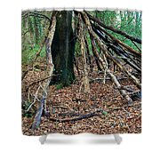 Old Woodland Hide. Shower Curtain