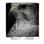 Older And Wiser Shower Curtain