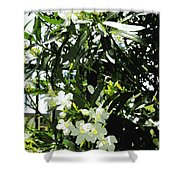 Oleander 2018 Shower Curtain