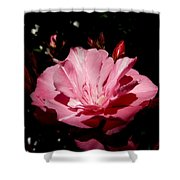 Oleander Bloom Shower Curtain