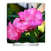 Oleander Blooming Shower Curtain