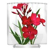 Oleander Emile Sahut 2 Shower Curtain