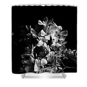 Oleander Flowers In Black And White 2 Shower Curtain
