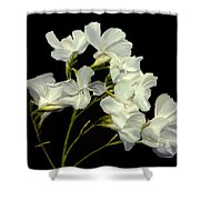 Oleander Shower Curtain