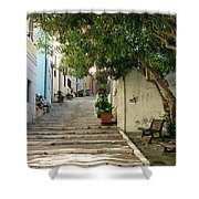Oleander Steps Shower Curtain